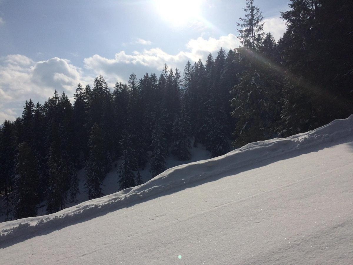 Schneesporttag-fuer-Gross-und-Klein_7